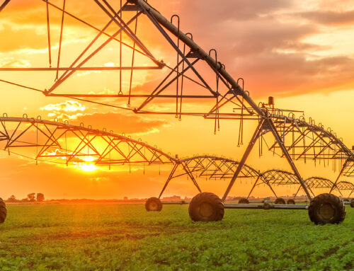 NSW IRRIGATORS COUNCIL GOVERNANCE HEALTH CHECK